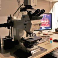03-Microscope plein champ Leica