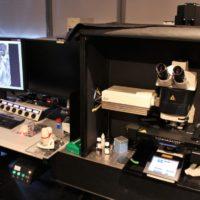 14-Microscope Confocal SP5-MP-FLIM