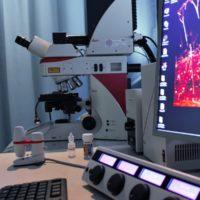 11-Microscope Confocal SPE 2